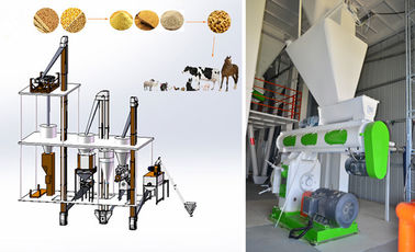 Professional Feed Pellet Production Line Broiler Chicken Feed Making Machine